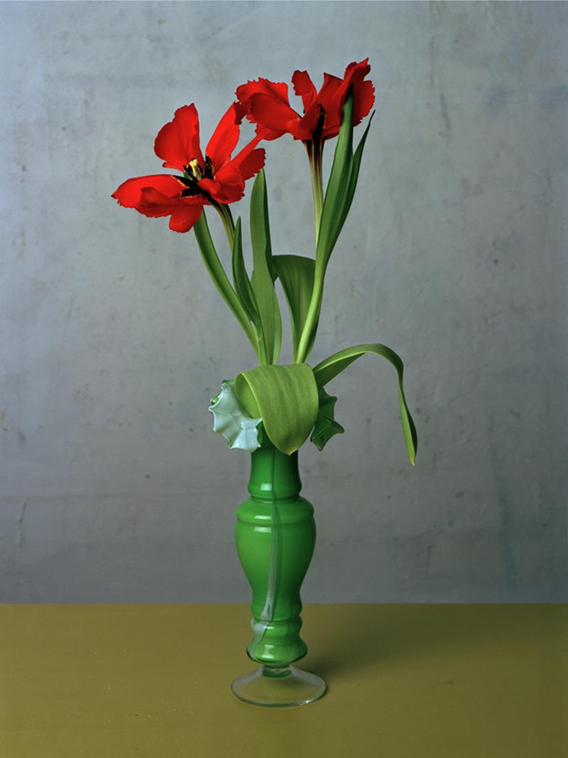 Kris-Scholz-_-Tulpen-1-_-240-x-180-cm-_-1993.jpg