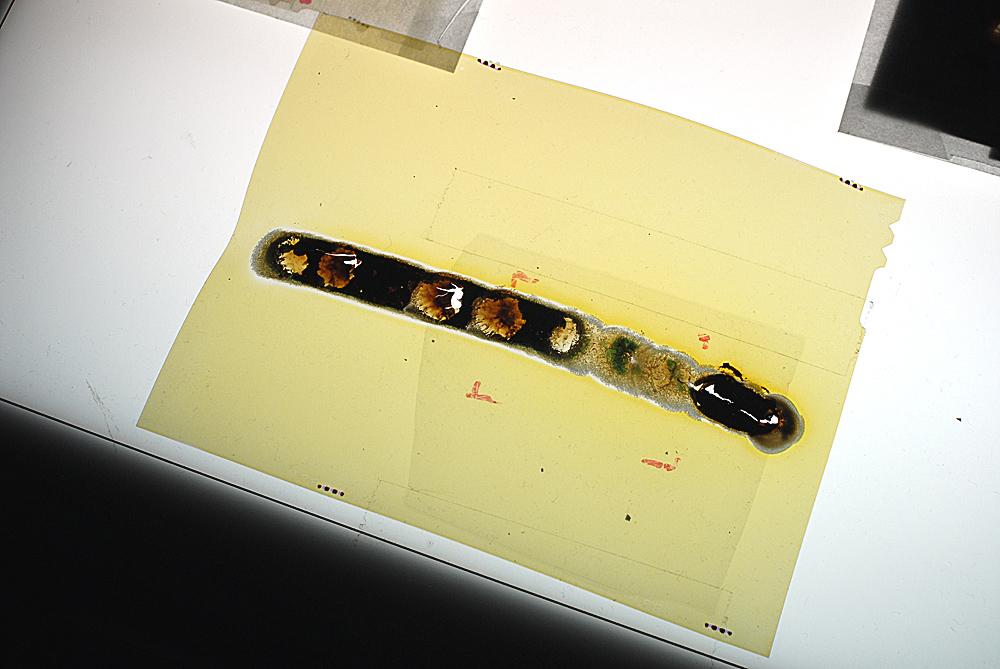 Stolz_SUN#165_slide film 4x5'.jpg