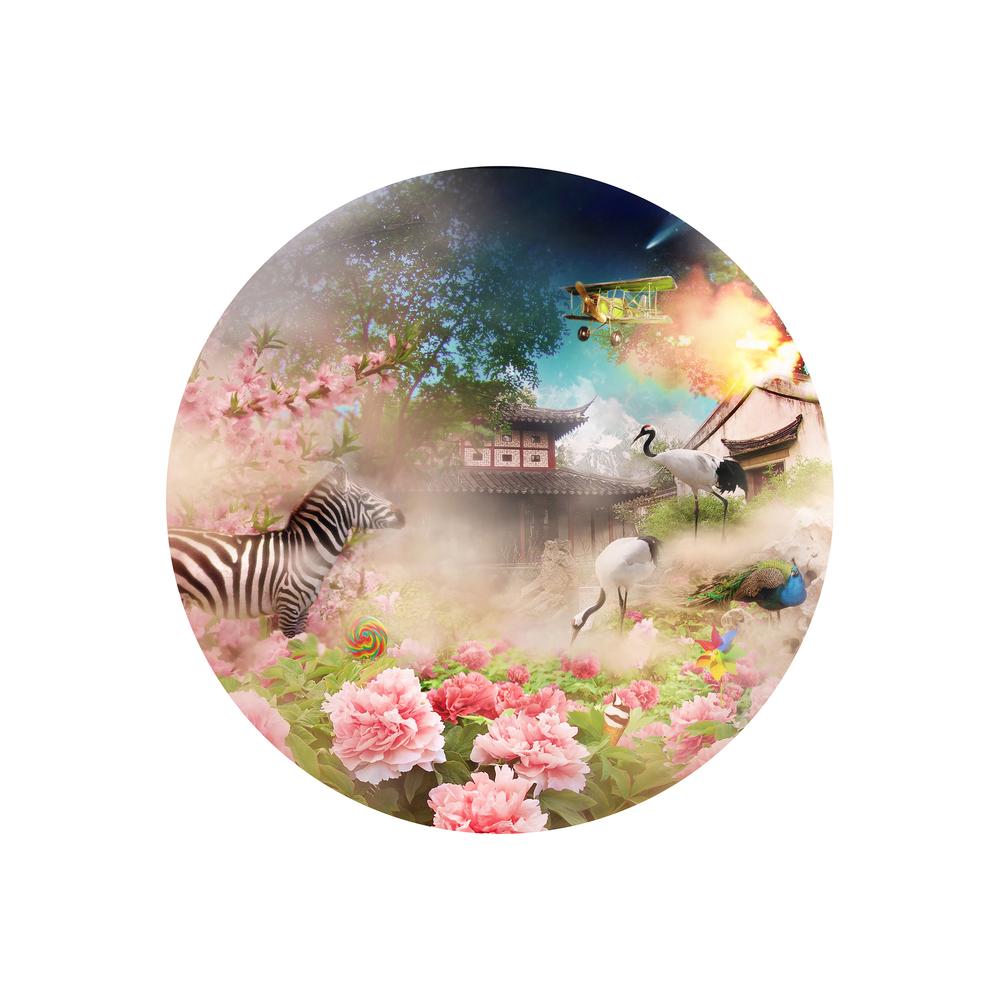 游园.繁花 Peony Pavilion.The Garden C-Print 2008  120x120cm.jpg
