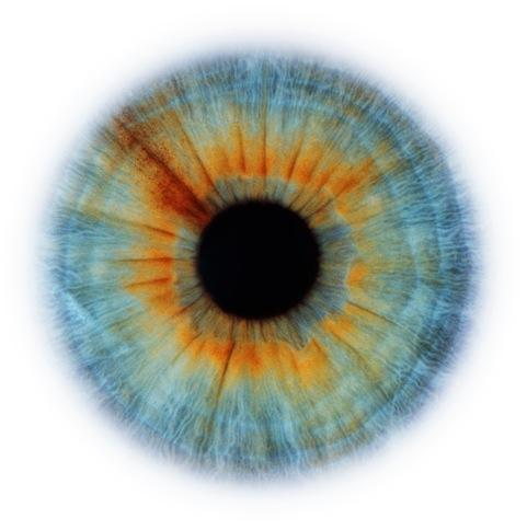 RANKIN // eyescape