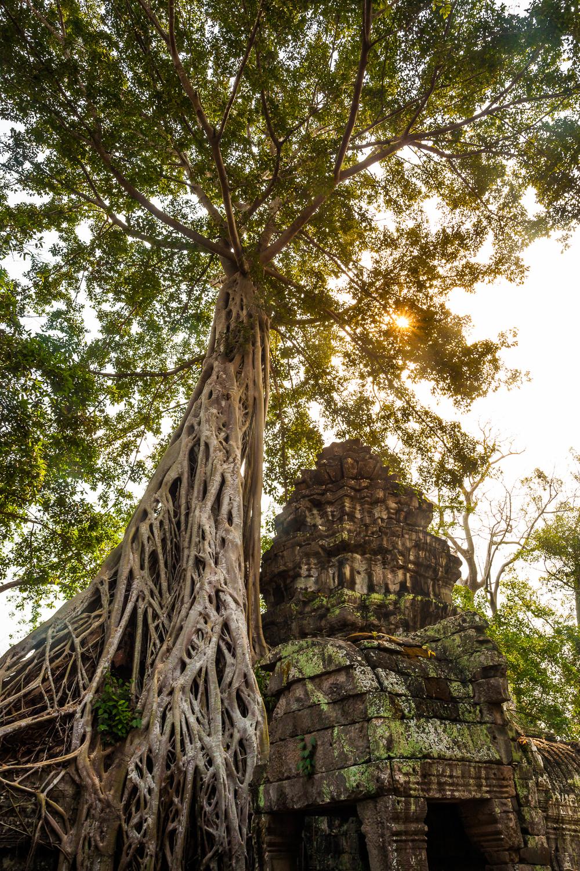 Francois Marclay_Cambodia_37.jpg