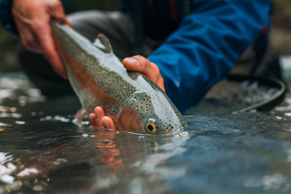 Francois_flyfishing_13.jpg