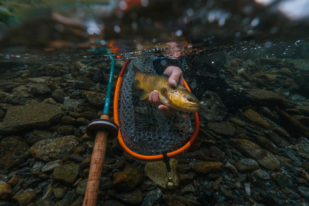 Francois_flyfishing_36.jpg