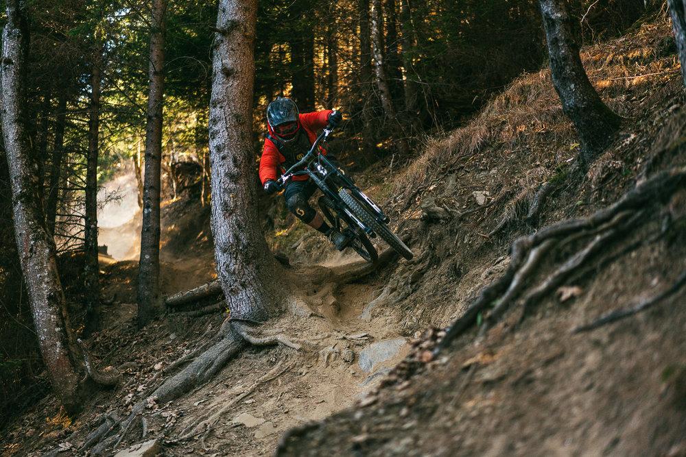 Francois_bike_3.jpg