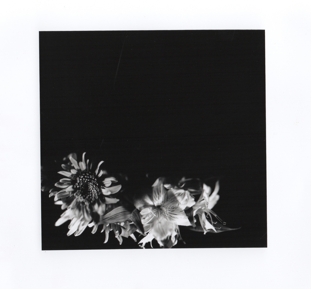 Flower 4x5 1 CLEANED.jpeg