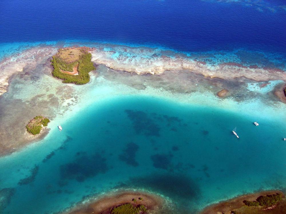 C reef (2).jpg