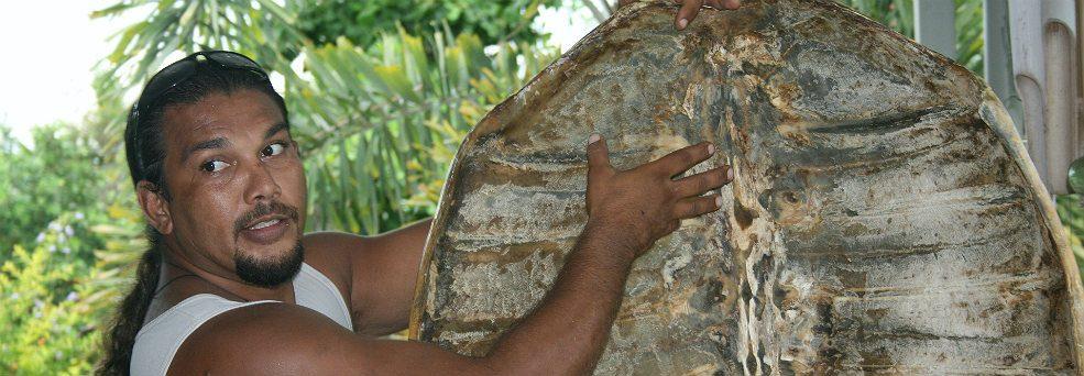 Kuku_Yalanji_Aboriginal_Talk-985x342.jpg