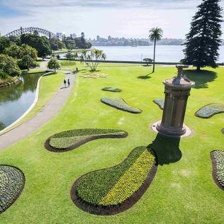 Sydney-Royal-Botanic-Garden-Sydney.jpg