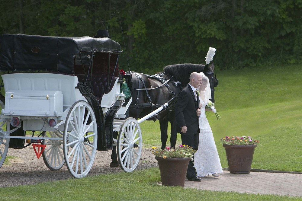 wedding 6  18  2011  3SM.jpg
