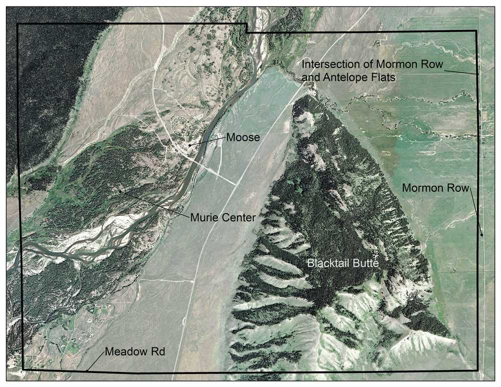 The Blacktail Butte Raptor Community study area.