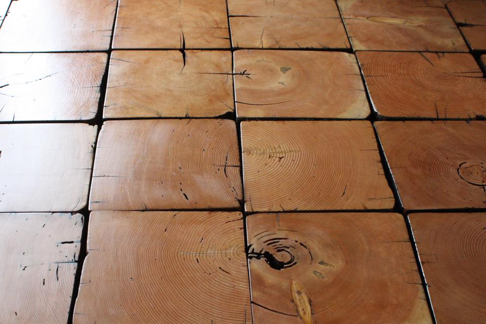 stumps960.jpg