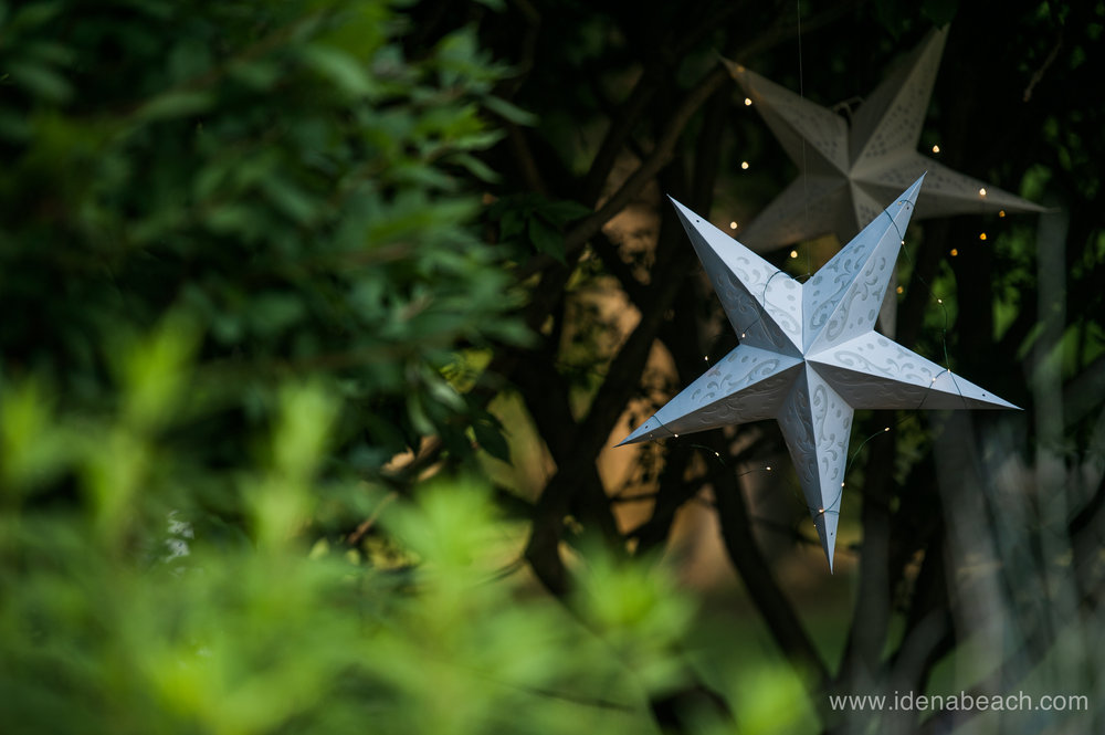Park-McCullough-Garden-Gala -8.jpg