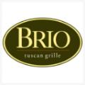 brio-square.png