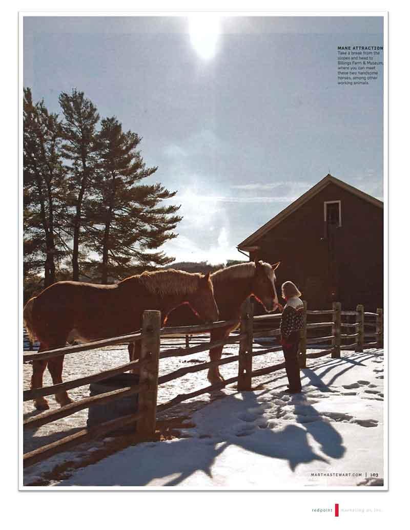 02-Martha-Stewart-January-2013_Page_7.jpg
