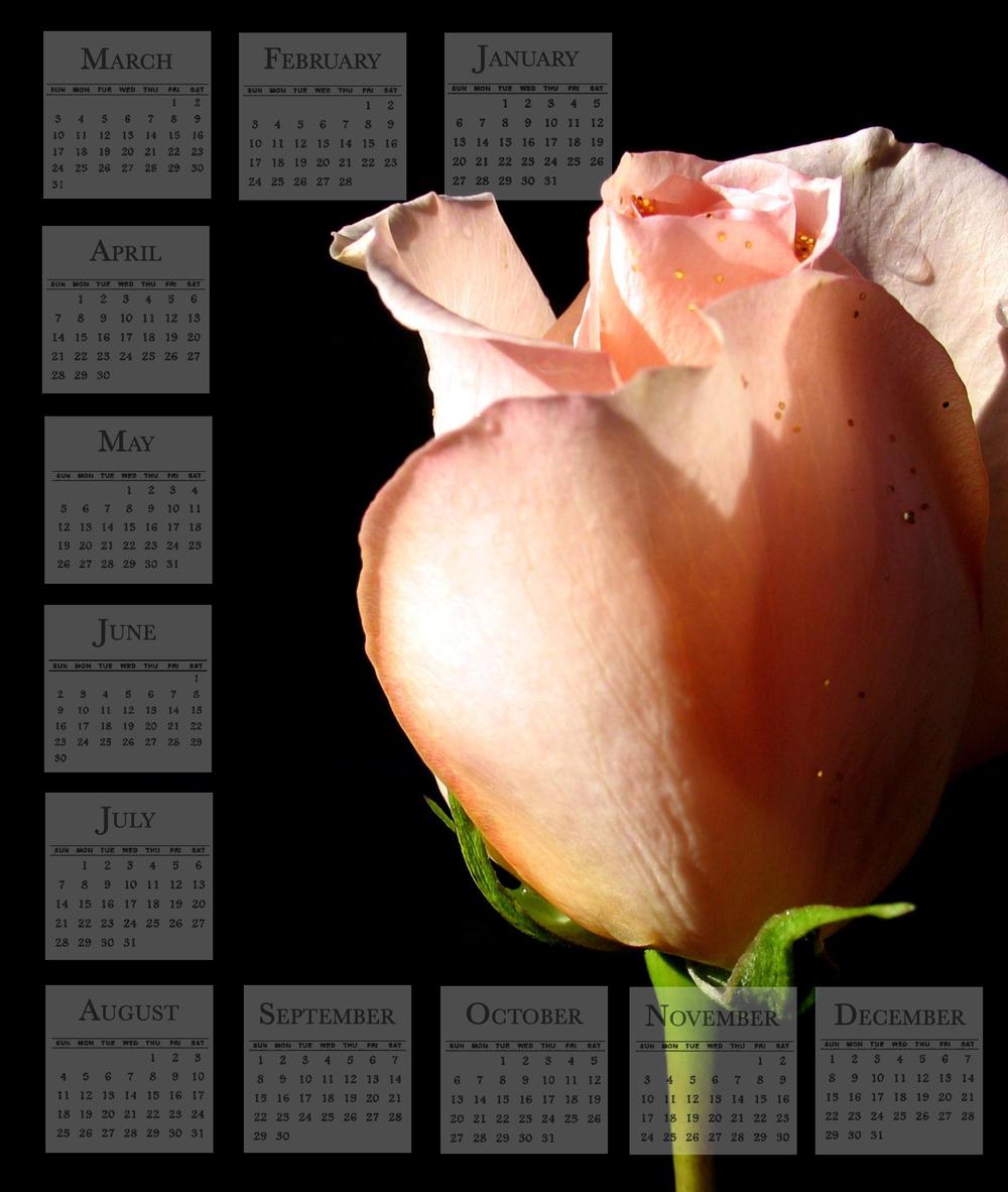 Calendar Template.jpg