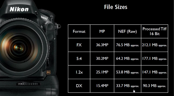 Nikon-D800-Image-Sizes-560x310.png