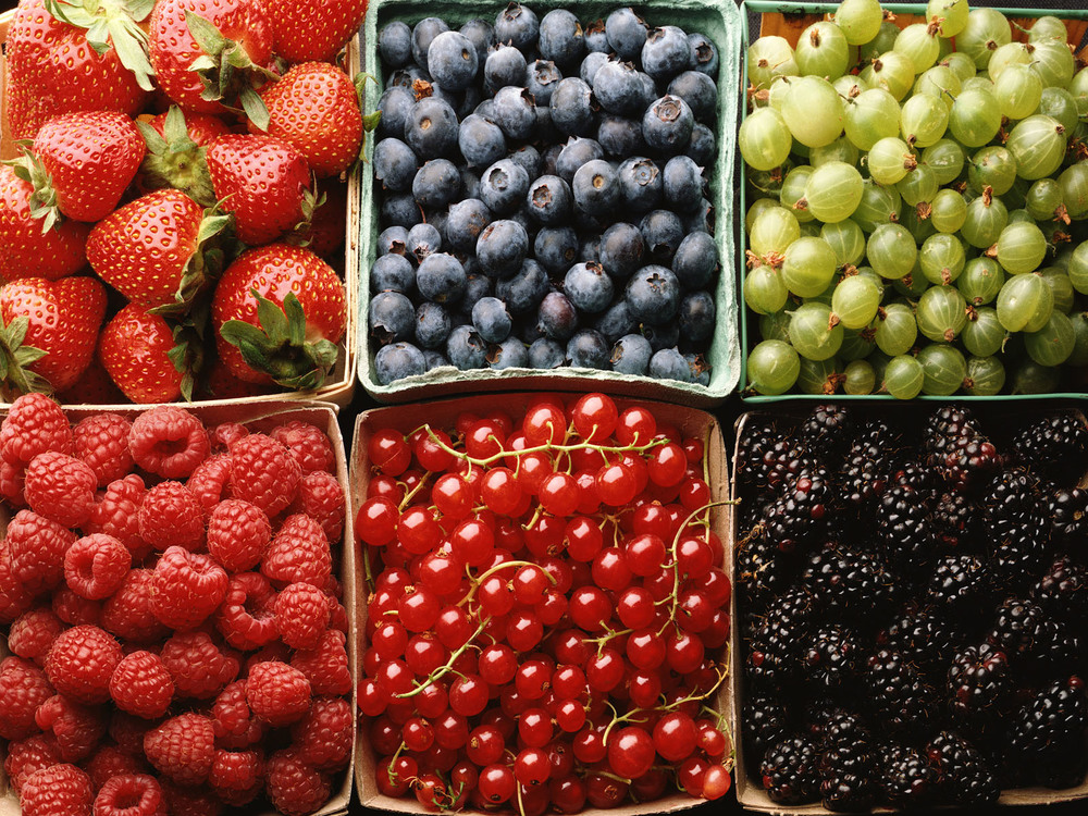 Food_Photography_Wallpaper_(14).jpg