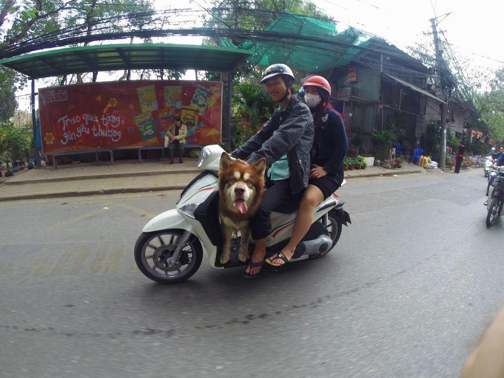 HM - Hanoi_Cantor_13.jpg