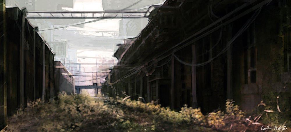 Overgrown Alley2.jpg