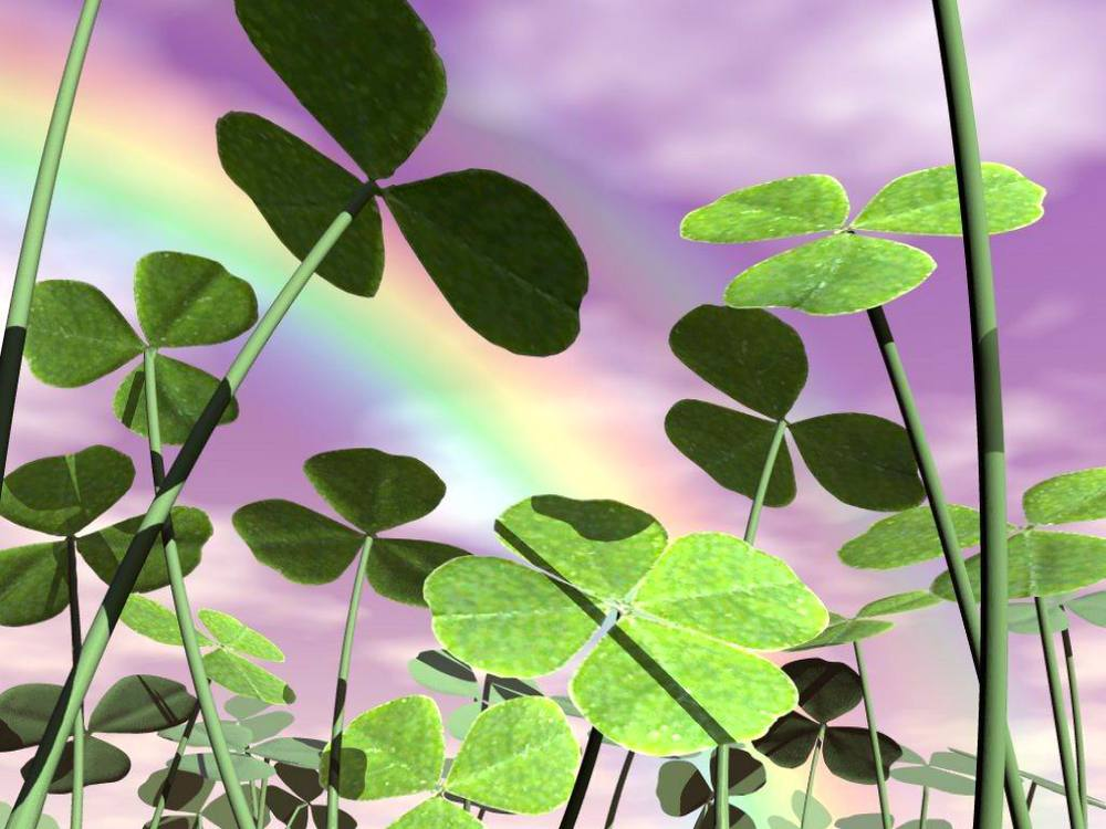 It's a beautiful purple day with Shamrocks and Rainbows!