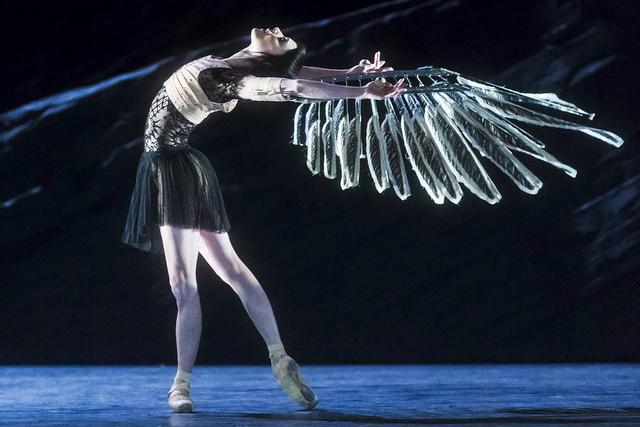 Sarah Lamb in Raven Girl © ROH/Johan Persson, 2013