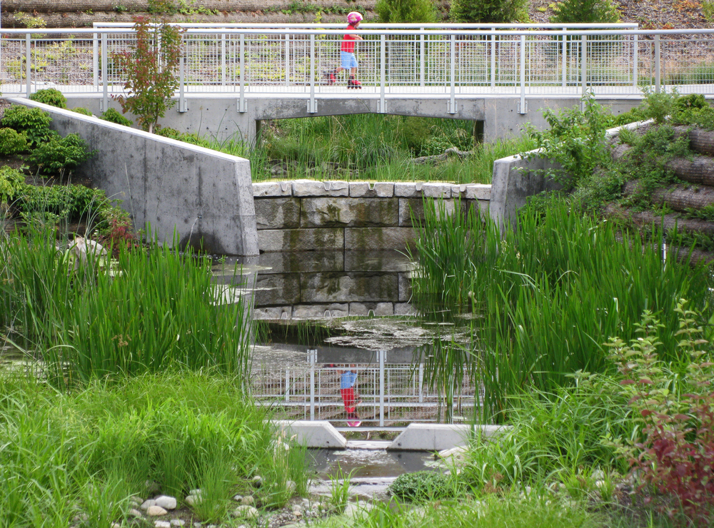 THORNTON CREEK WATER QUALITY CHANNEL | SEATTLE, WA