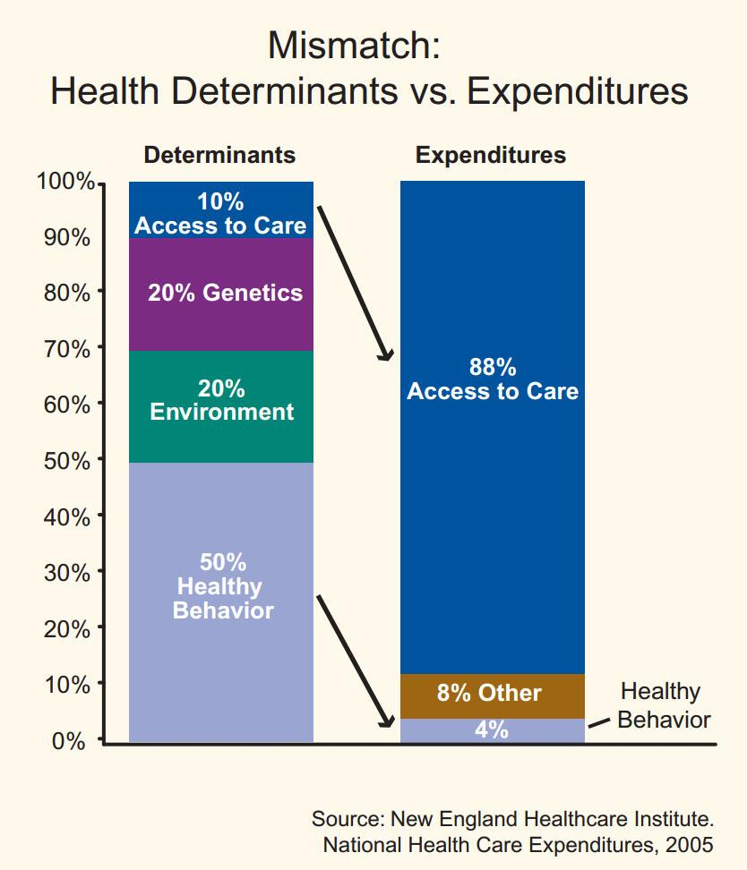 healthcaredeterminants