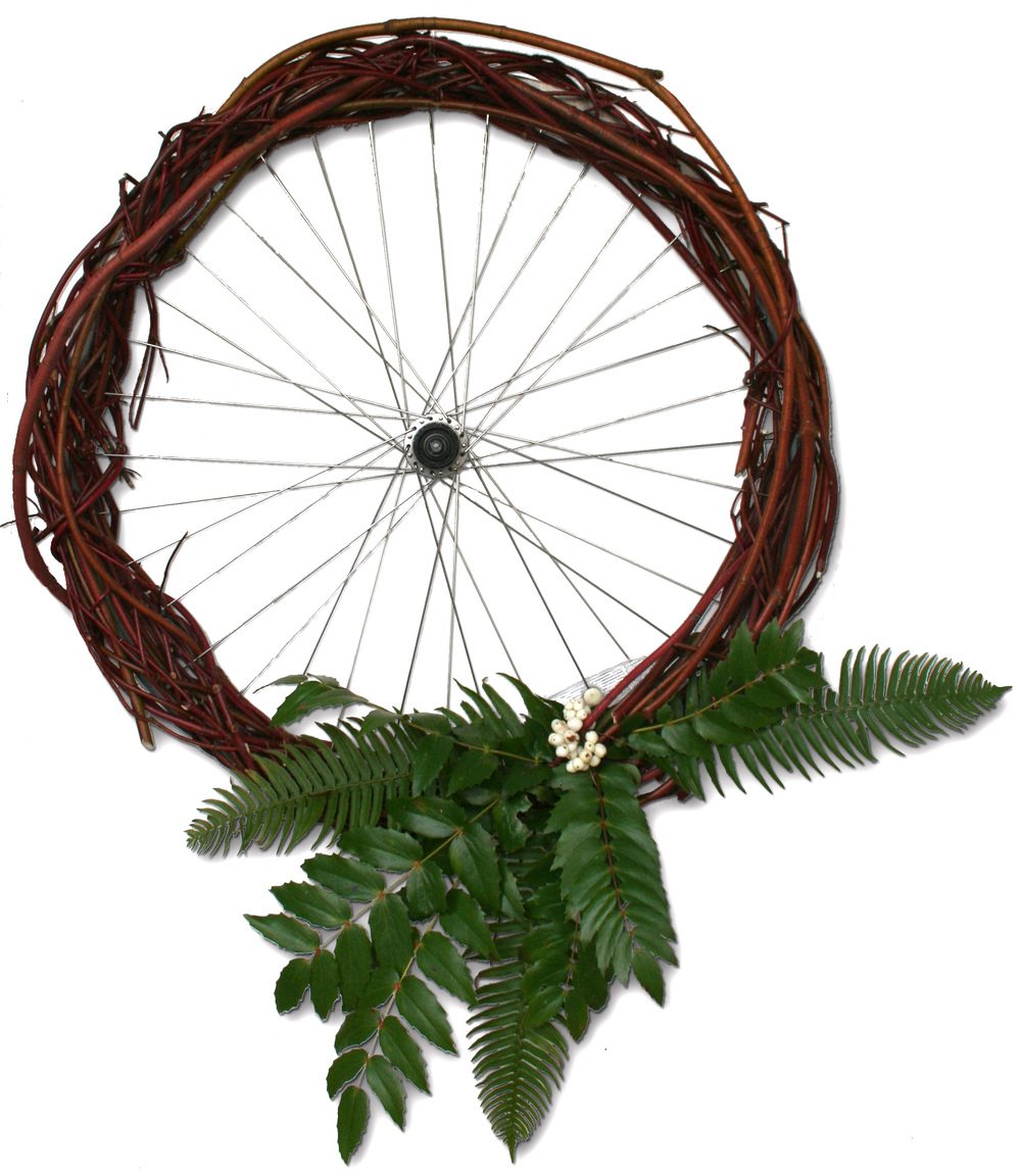 For our holiday card this year, we created a one of kind holiday wreathe using some of the tools of our trade: an old bike wheel and native plants harvested from our yards.  Even in the dead of winter, there are plenty of local, native plants that can be employed in our seasonal celebrations. So how did we do it?  After securing an old bike wheel, we went looking for red-twig dogwoods (Cornus stolonifera) that had gotten a bit overgrown and harvested some of their branches, which stand out in the winter for their bright red color, and wove those through the spokes of the wheel until the rims disappeared.  As accents, we arranged a few snowberries (Symphoricarpos albus) over cuttings of our native Oregon grape (Mahonia nervosa) and the ubiquitous sword fern (Polystichum munitum).  And with that, a sustainable, recycled, locally-sourced holiday decoration.