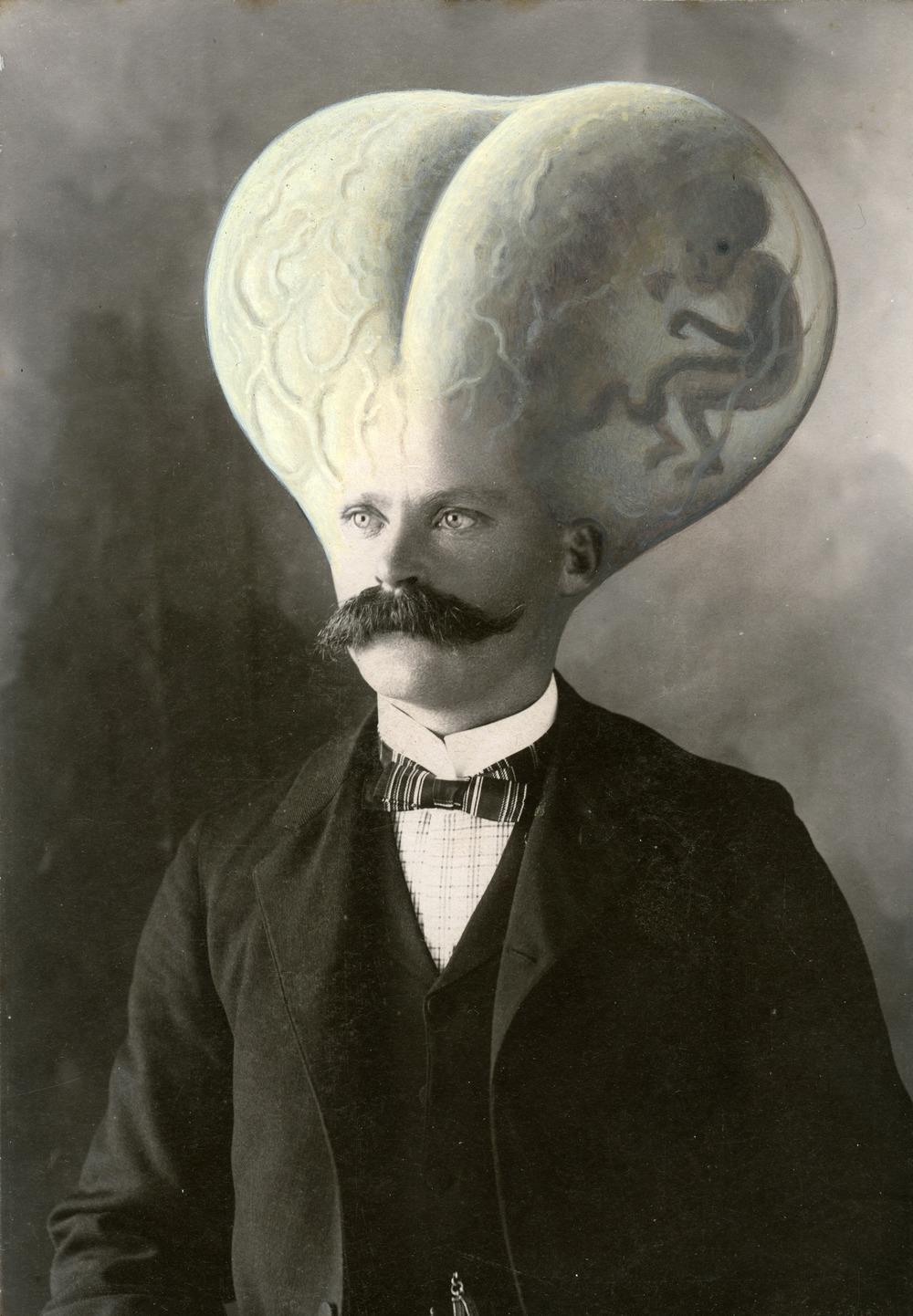 ballshead.jpg