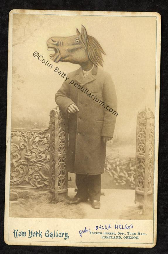 horsehead oscar nelson sm.jpg