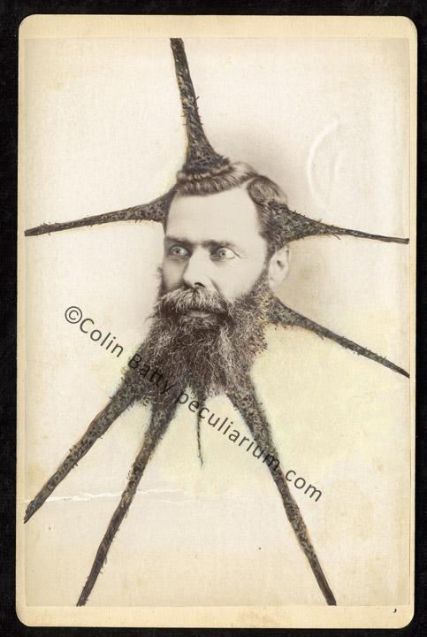 dreadded spider beard_sm.jpg