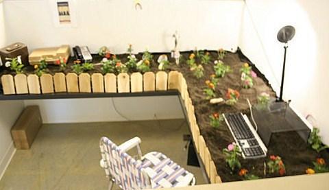garden-cubicle.jpg