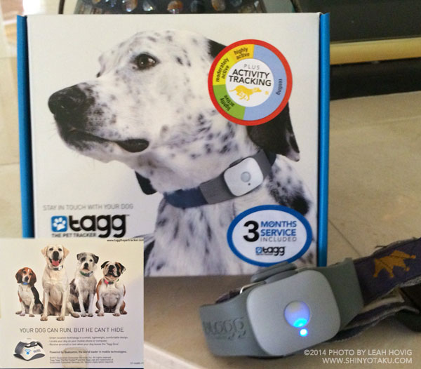 Best product you can buy for your dog Tagg The Pet Tracker www.tagg.com