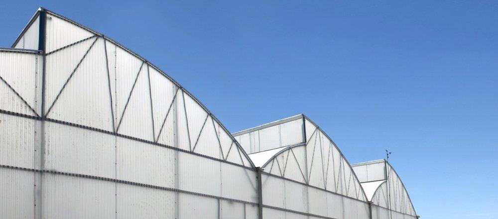 Greenhouse exterior.jpg