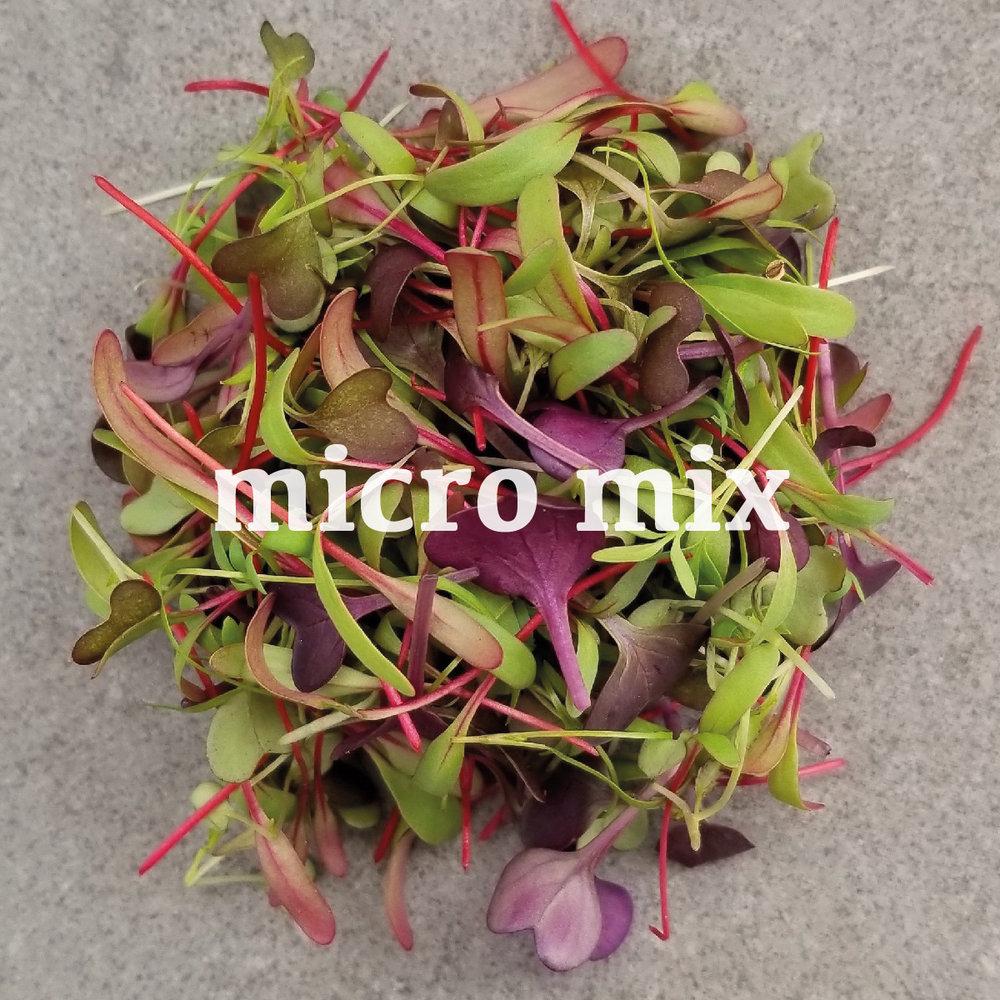 micro mix web.jpg