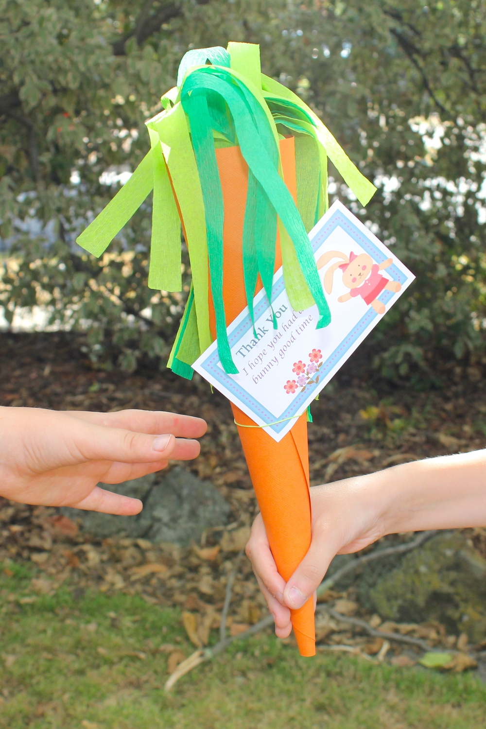 Carrot party favours
