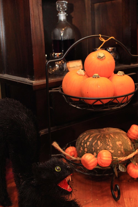 Halloween Witch Kitchen - Pumpkins