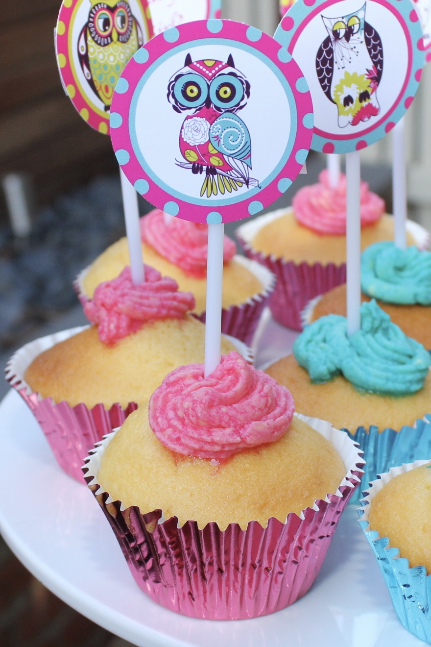 Owl Baby Shower - Baby Girl