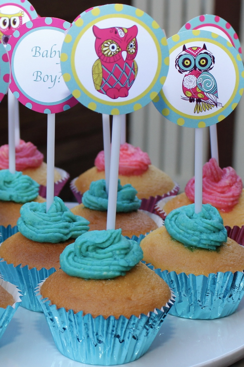 Owl Baby Shower - Baby Boy