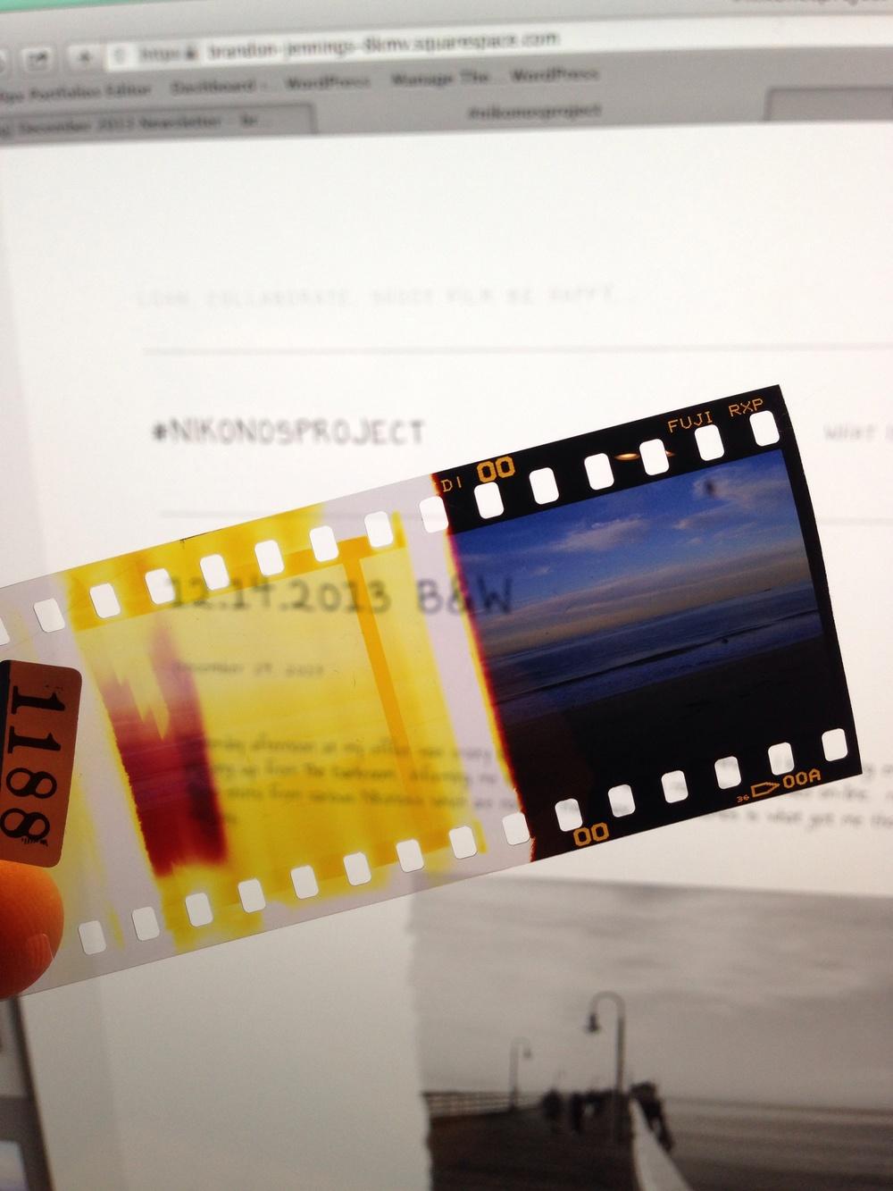 Nikonos i | Fuji provia 400 (slide)   | ©brandon jennings