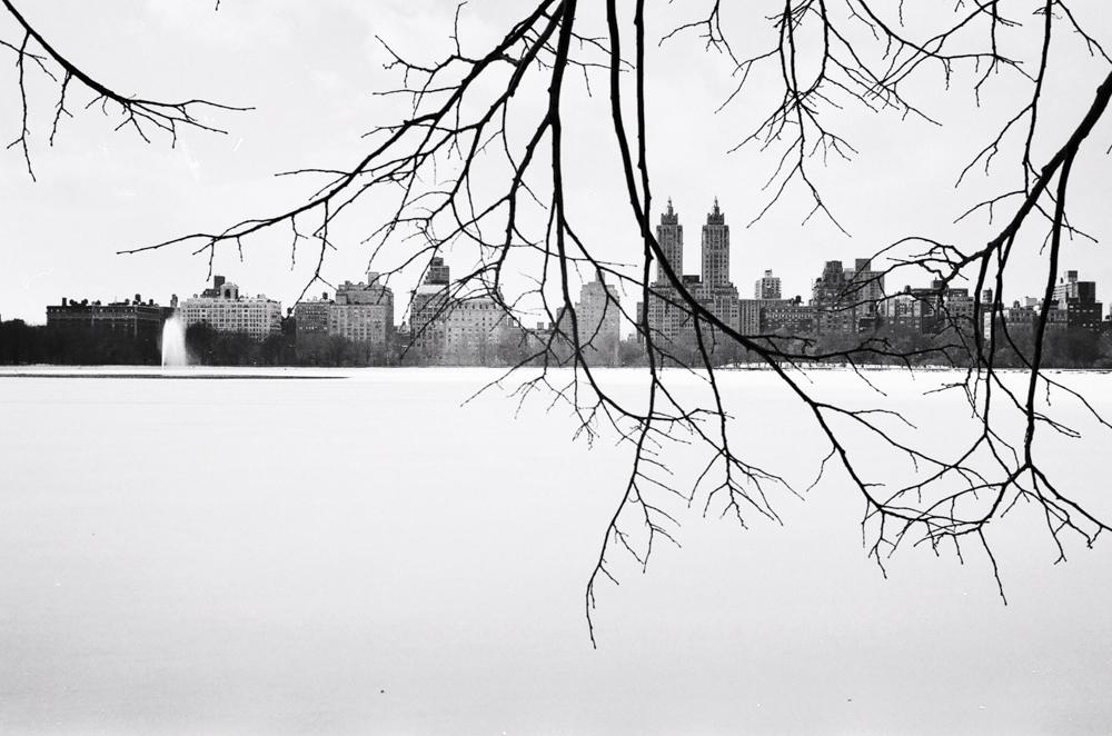Nikonos Project©Brigid Lally