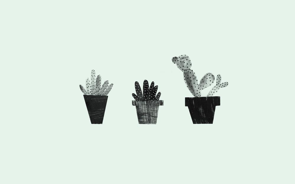 cacti background