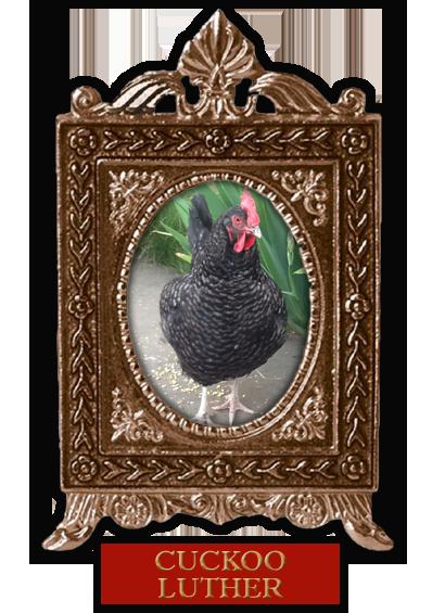 Cuckoo.png