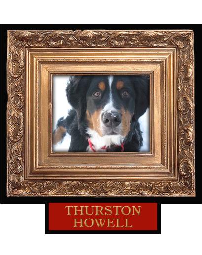 005_Thurston_Howell.PNG
