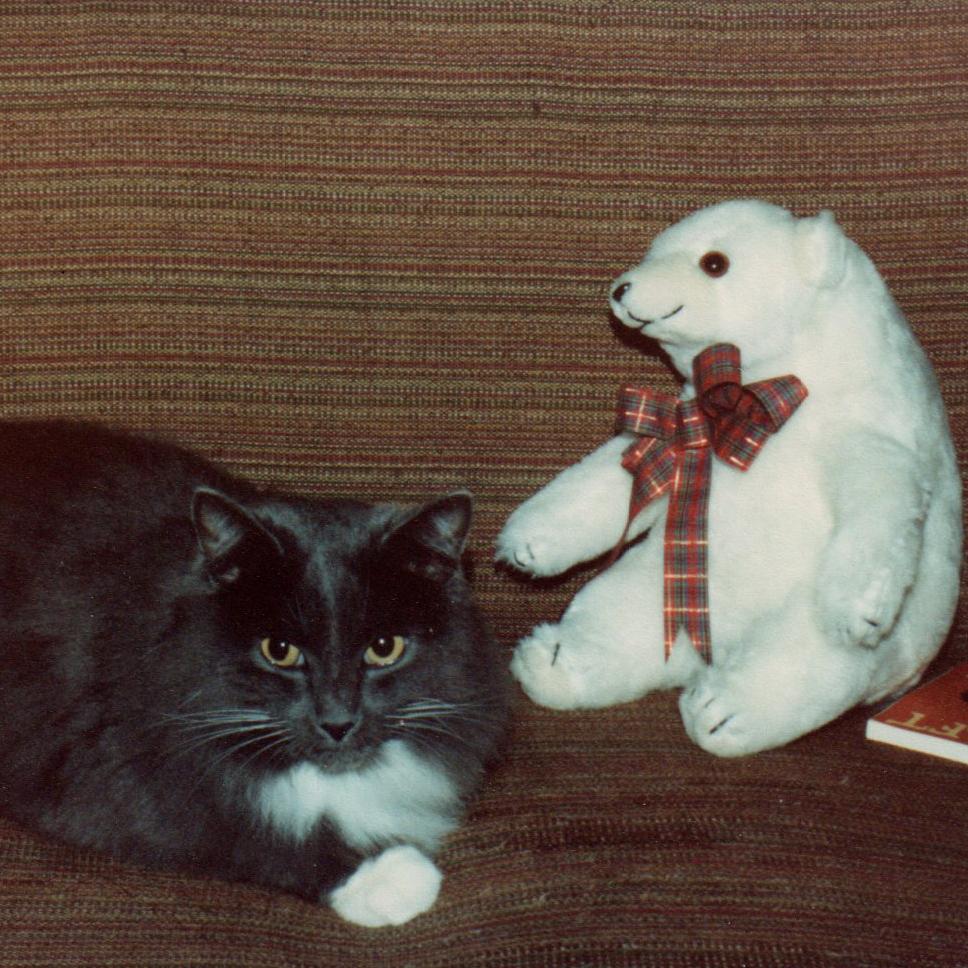 The regal Cat Ashley, with a polar bear friend