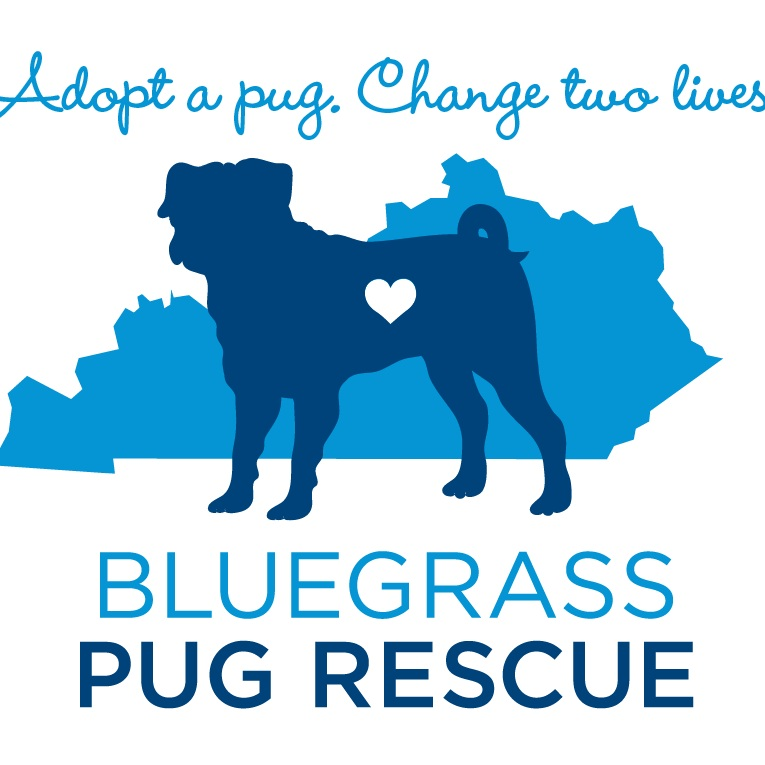 Your Pugs Weight Bluegrass Pug Rescue