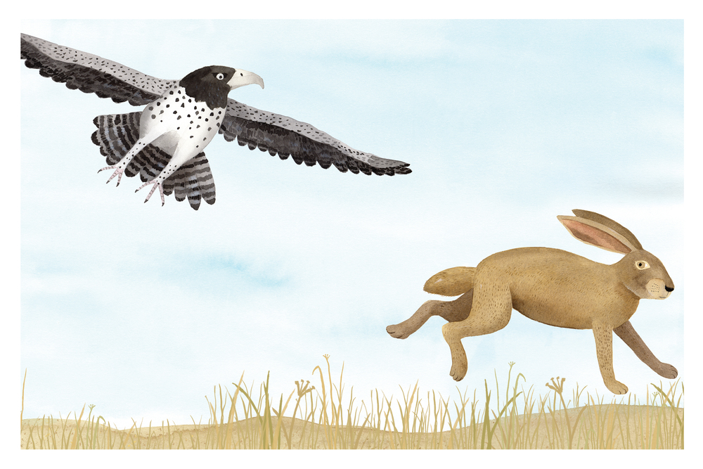 Eagle and hare from Run For Your Life, Holiday House