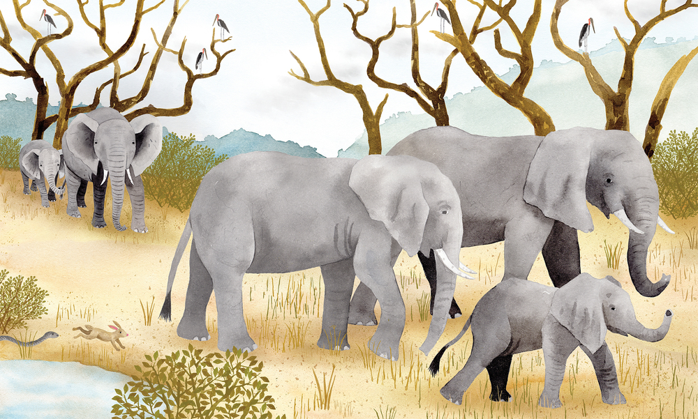 Elephants from Run For Your Life, Holiday House