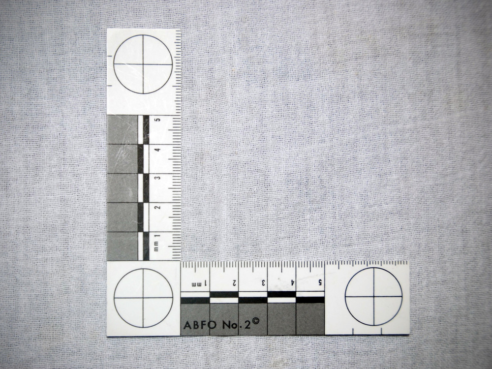 ABFO No. 2 scaled ruler