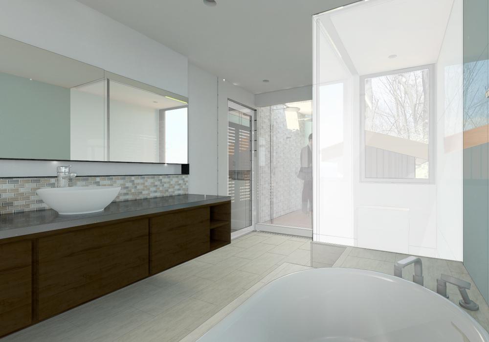 2014.12.30_FRANCU_master_bathroom_12.17.jpg